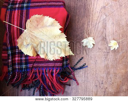 Red Plaid Scarf With Fringe On Woooden Background With Yellow Leaves. Copy Space. Autumn Concept. Au
