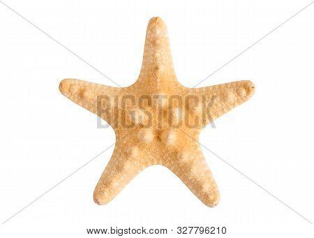 Beautiful Dried Starfish Closeup. Starfish Isolate On A White Background.