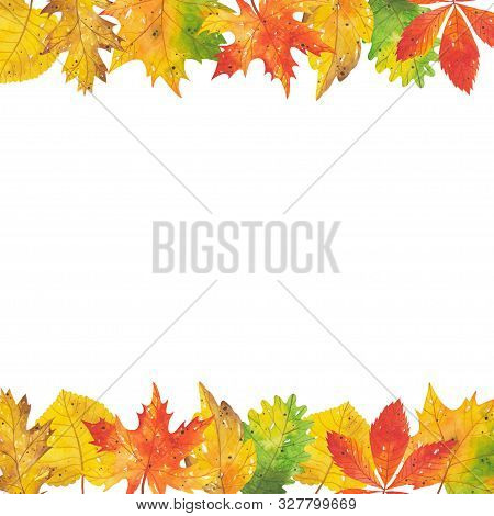 Horizontal Watercolor Frame Of Autumn Leaves And Branches. Forest Red-yellow-green Natural Elements.