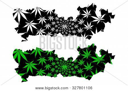 Berkshire (non-metropolitan County, Shire County) Map Is Designed Cannabis Leaf Green And Black, Roy