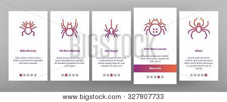 Spider Silhouette Onboarding Mobile App Page Screen Vector Thin Line. Danger Poison Arachnid Spider