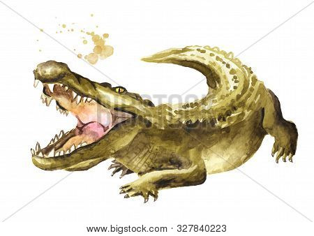 Wild Attacker Forward Crocodile Or Alligator With Open Mouth. Watercolor Hand Drawn Illustration, Is