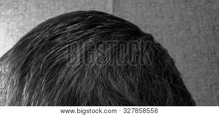 Gray Hair Close-up. White-haired Elderly Man In The Close-up