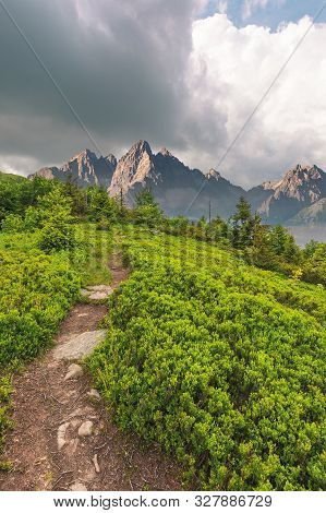 Foot Path Uphill In To The Forest. Lovely Summer Scenery. Hiking And Outdoor Activities Concept. Dar