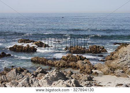 This Is An Image Of The Rocky Coast Of Asilomar State Reserve In Pacific Grove, California.