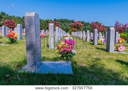 Daejeon, South Korea; October 13, 2019: Row Of Fresh Cut Flower Bouquets In Front Of Headstones At N