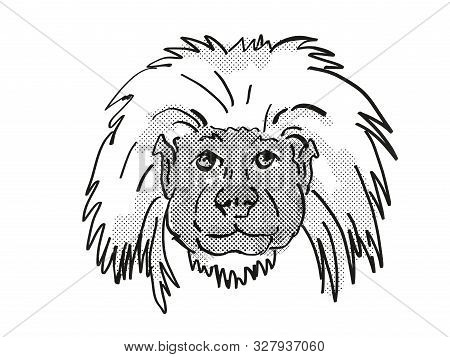 Retro Cartoon Style Drawing Of Head Of A Cottontop Tamarin , An Endangered Wildlife Species On Isola