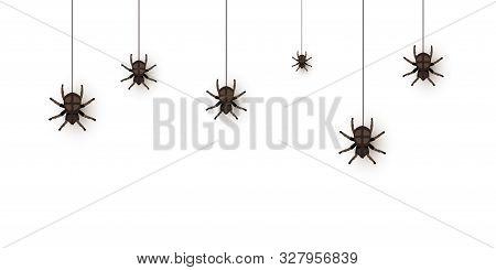 Creepy Spiders On Web Flat Vector Illustration. Mygalomorphae, Scary Arachnid Climb Down. Arachnopho