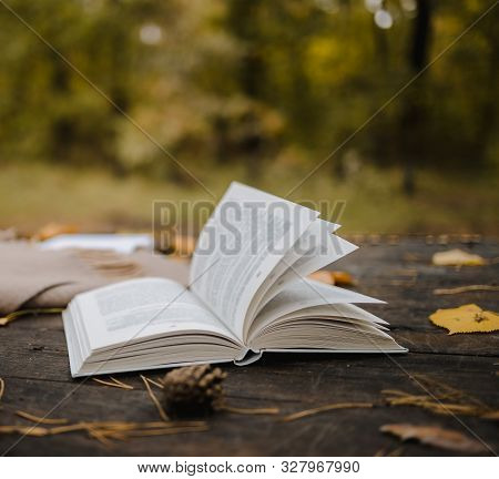 On An Old Wooden Table In An Autumn Park Lies An Open Book, A Plaid, A Garland With Lights, A Cup Of