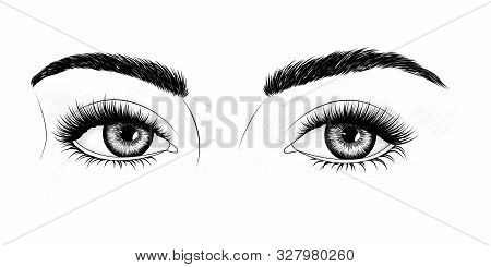 Black And White Hand-drawn Image Of Eyes With Eyebrows And Long Eyelashes. Fashion Illustration. Vec