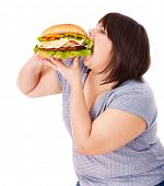 Overweight woman eating hamburger. Isolated. poster