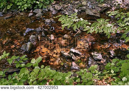 Top View Of A Small Mountain Stream River Running In A Shadowy Forest