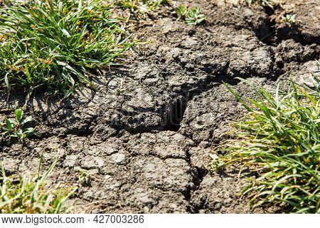 Cracks On The Ground During A Drought In Summer