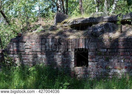 Remnants Of An Old Building In The Forest, Overgrown With Trees