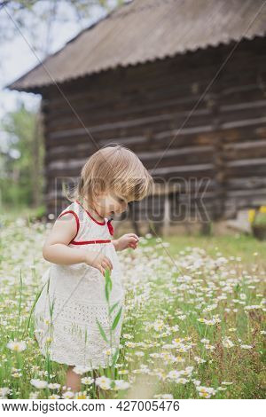 Charming Baby In An Embroidered Dress Enjoys Flowers Near A Wooden Hut