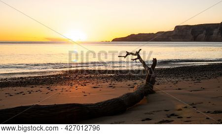 Colorful Sunrise On The Beach With Tree Trunk In Foreground. Rising Sun On Horizon Shot At Cape Kidn