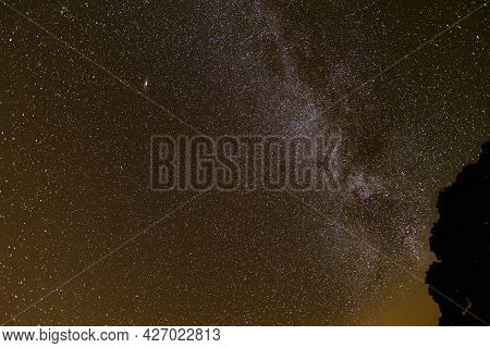 The Milky Way And Andromeda Rising Above A Tree In The English Lake District