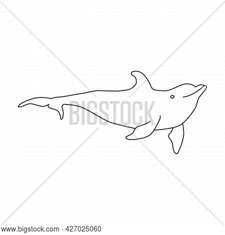 Dolphin Vector Outline Icon. Vector Illustration Sea Animal On White Background. Isolated Outline Il