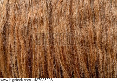 The Texture Of Beautiful Thick Red Hair. Beautiful Wavy Hair.