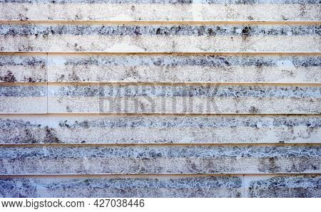 Black Mold On Vinyl Siding On A Missourk Home. The North Wall Is A Breeding Ground For The Unsightly