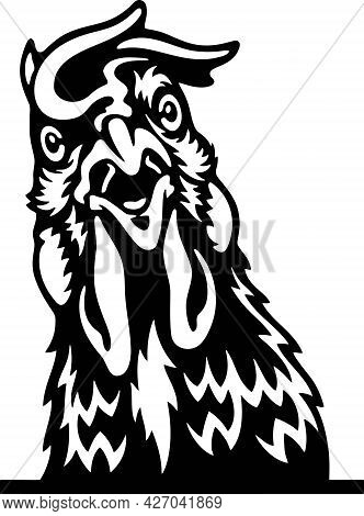 Peeking Chicken - Funny Farm Animals Peeking Out - Face Head Isolated On White