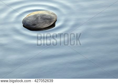 Some pebbles in the clear ocean water background banner. 3D illustration