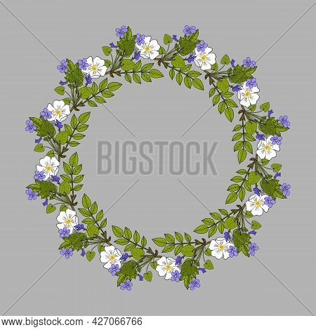 Floral Wreath With Violet And Rose. Botanical Hand Drawn Vector Illustration