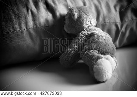 Alone Teddy Bear Sitting Beside Pillow Dark Black And White Image. Melancholy Regret Disappointed Cr