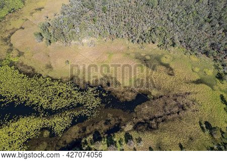 Aerial Abstract Landscape Pattern Featuring Wetlands And Bushland In Yellow Green Hues