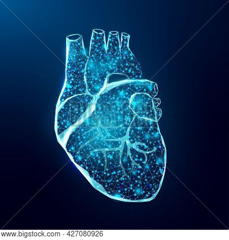 Human Heart. Wireframe Low Poly Style. Concept For Medical Science, Cardiology Illness. Abstract Mod