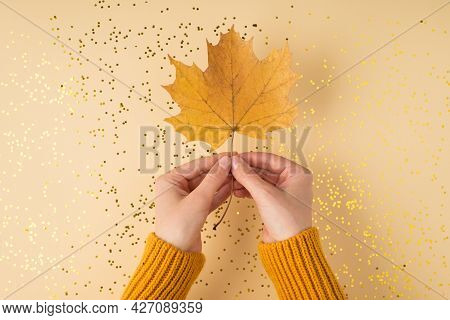 First Person Top View Photo Of Woman's Hands In Yellow Pullover Holding Orange Autumn Maple Leaf Ove