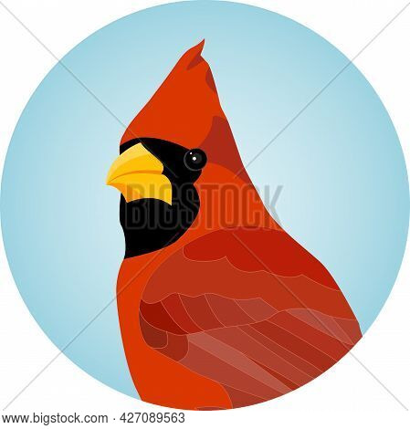 Portrait Of A Redbird Northern Red Cardinal, Male - Vector Illustration
