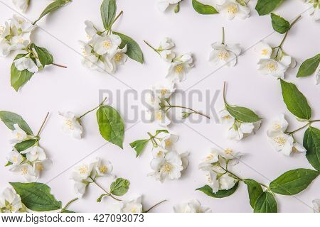 Pattern Of Bud Jasmine And Leaves Scattered On A Gary  Background, Overhead View. Flat Lay Pattern