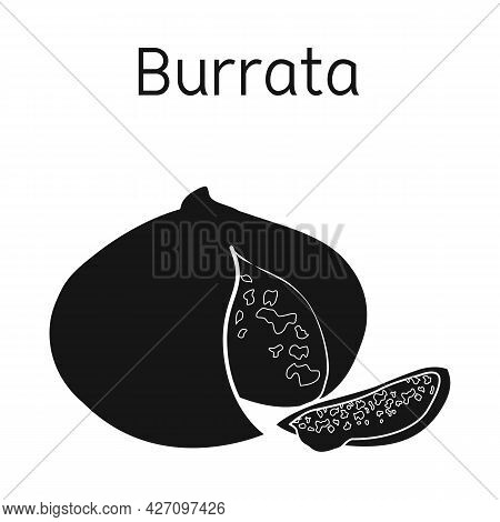 Isolated Object Of Cheese And Burrata Logo. Web Element Of Cheese And Piece Stock Symbol For Web.