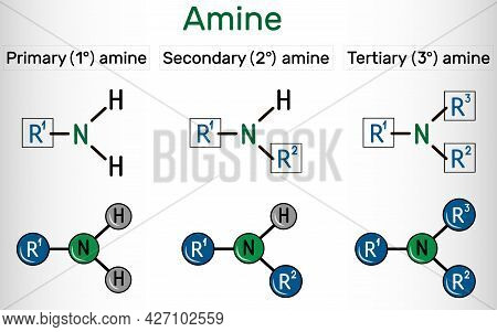 Amino Group (primary, Secondary, Tertiary). It Is Functional Group Comprised Of Nitrogen Atom Linked