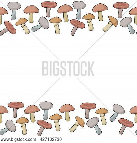Horizontal Borders From Edible Mushrooms Of Various Types, Autumn Natural Elements For Design Vector