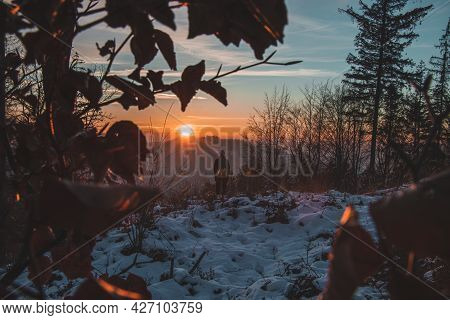 Young Mountain Man Enjoys The Sunset In The Beskydy Mountains In The Czech Republic. Cool View Near