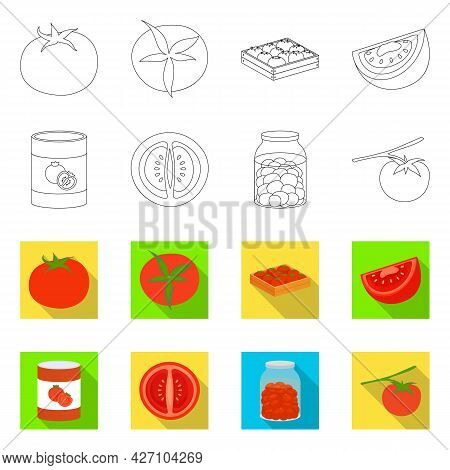 Isolated Object Of Vegetable And Delicious Sign. Collection Of Vegetable And Natural Vector Icon For