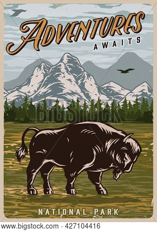 Summer Adventure Colorful Poster In Vintage Style With Powerful Bison And Flying Bird On Forest And
