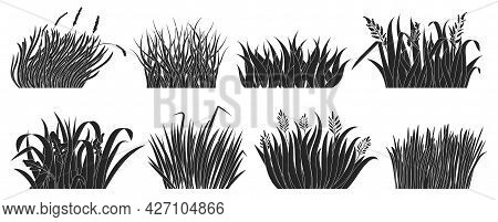 Green Grass Vector Black Set Icon. Isolated Black Set Icon Lawn. Vector Illustration Green Grass On