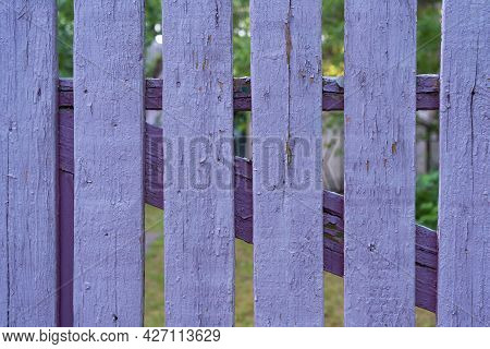 Fragment Of An Old Wooden Fence. The Planks Are Painted Purple, The Texture Of The Previous Layers O