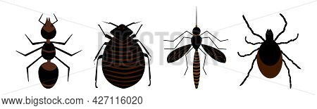 Harmful Insects Set Icon Isolated On White Background. Signs And Symbols Of Pests, Tick, Ant, Fleas