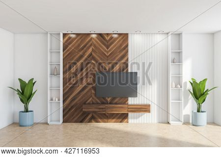 Living Room Wall Interior With White And Parquet Parts. Shelves At The Sides And Beneath The Televis