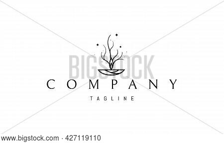 Vector Logo On Which An Abstract Image Of A Candle Flame, Smoke From Which Resembles A Tree.