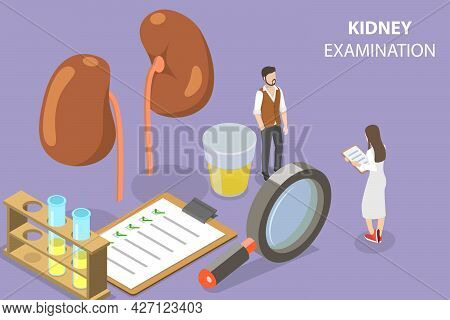 3d Isometric Flat Vector Conceptual Illustration Of Kidney Checkup, Urology And Nephrology