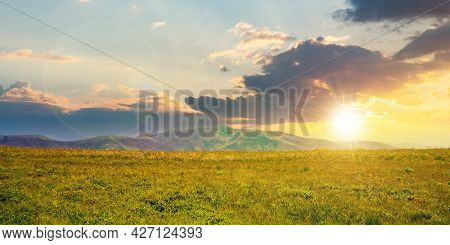 Alpine Mountain Meadow In Summer At Sunset. Beautiful Landscape Of Carpathians In Evening Light