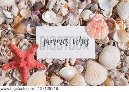 Summer Vibes Lettering On A Piece Of Paper On Seashells And Starfish. Summer Creative Text Flat Lay