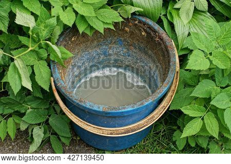 One Old Blue Plastic Bucket With Dirty Soapy Water Stands On The Street Among Green Vegetation