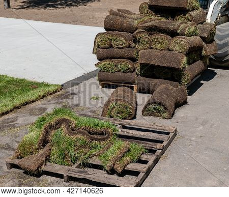 Wood Pallets With Rolls Of Fresh Sod Grass For Installation, And Trimmed Pieces, At A New Home Const