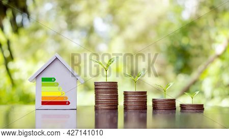 Trees Grow On Piles Of Money And Energy-saving Charts On Home Models In A Residential Home Energy Ef